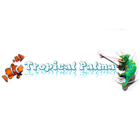 TROPICAL PALMA